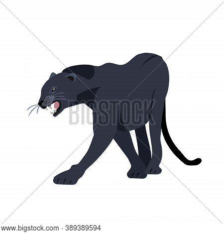 Black Jaguar Puma Lion Panther. Vector Illustration.
