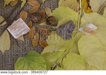 On The Autumn Leaves Are Semi-precious Stones Red Gypsum, Garnet, Wulfenite, Andalusite, Citrine.