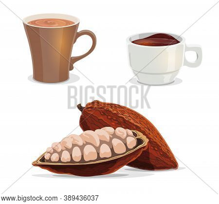 Cocoa Beans, Cacao, Hot Chocolate Or Coffee Cartoon Vector Of Food And Drink. Fruit Of Cocoa Tree Wi