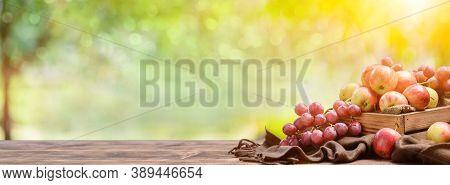 Fall Harvest Cornucopia Agriculture. Organic Fruit In Autumn Season. Thanksgiving Day.