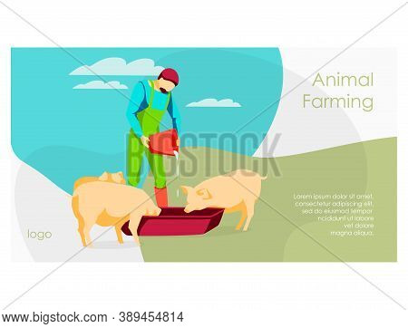 Animal Farmer Landing Page. Male Famer Feeding Pigs Pouring Water In Trough. Ivestock Agricultural I