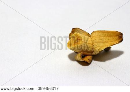 One Pisang Mas Banana Peeled And Eaten Isolated On The White Background. Golden Banana On The White