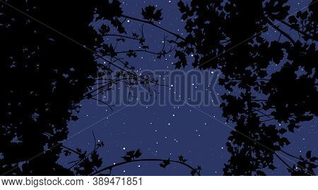 View Of The Night Starry Sky Through Plants. Vector Image
