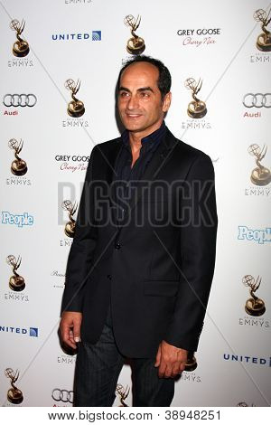LOS ANGELES - SEP 21:  Navid Negahban arrives at the Primetime Emmys Performers Nominee Reception at Spectra by Wolfgang Puck on September 21, 2012 in Los Angeles, CA