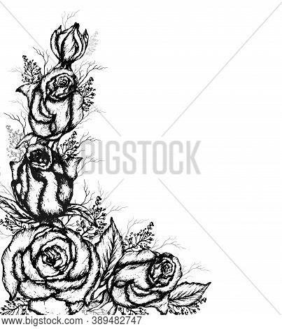 Modern, Monochrome Bouquet Of Rose Blades Of Grass. Flower Arrangement Hand - Drawn, Isolated On A W
