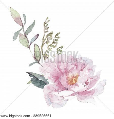 Watercolor Set With Bouquets Of Pion And Herbs.