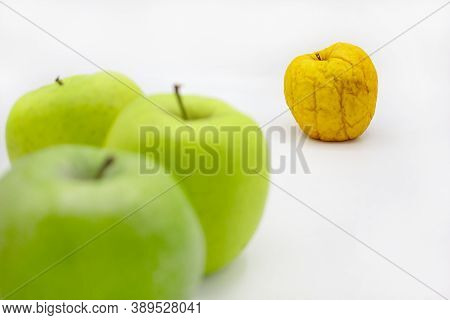 Individuality. Odd Man Out. Not Like Anyone Else. Healthy Green And Yellow Rotten Apple. Old And You
