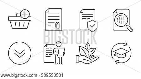 Organic Product, Attachment And Job Interview Line Icons Set. Analytics Chart, Insurance Policy And