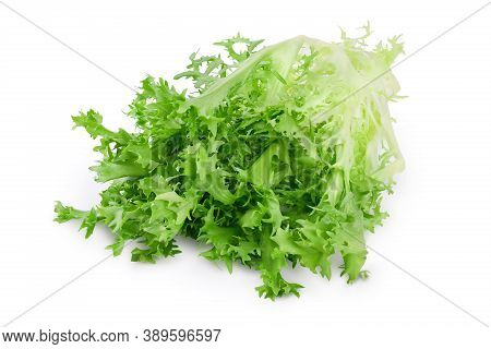 Fresh Green Leaves Of Endive Frisee Chicory Salad Isolated On White Background With Clipping Path An