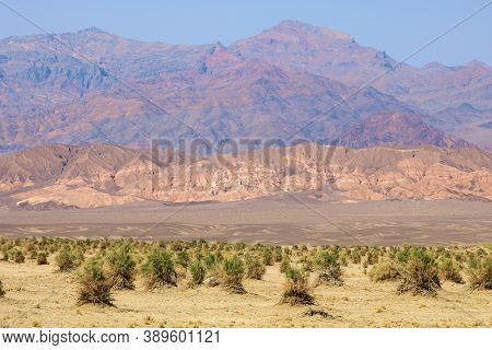 Chaparral Shrubs Covered With Sand And Rocks From Wind Storms Taken On A Sandy Plateau With Barren M