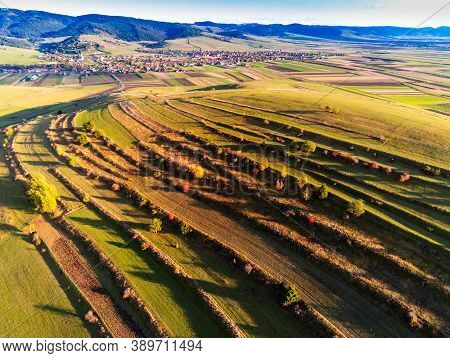 Aerial Drone View, Terraced Agricultural Fields Near A Small Village In Transylvania, Romania.