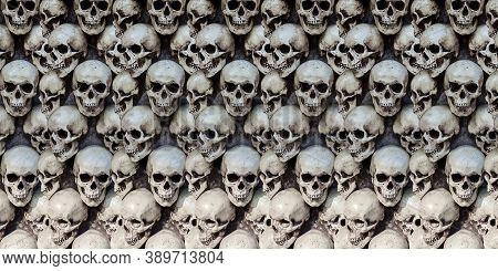 Group Human Skulls Background Texture Pattern. Horizontal Photography.