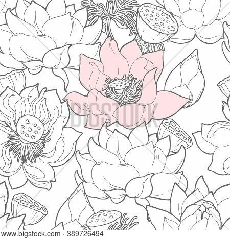 Vector Seamless Pattern With White And Pink Lotus