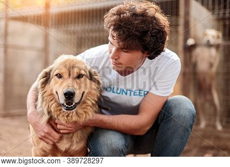 Young Male Volunteer Embracing Adorable Homeless Furry Dog While Working In Animal Shelter