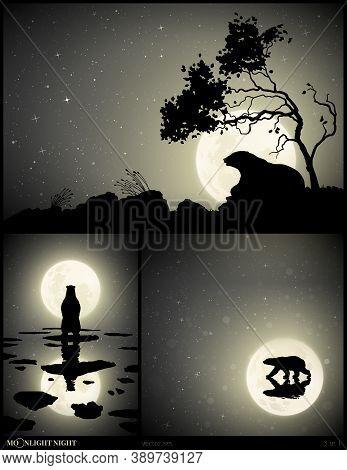 Lonely Bear Lying Under Tree On Moonlight Night. Wild Animal On Ice Floe. Arctic Landscape With Melt