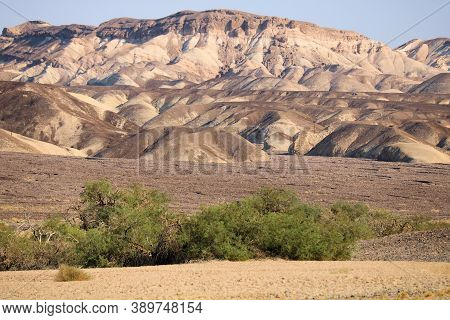 Barren Mountains Surrounded By Canyons On An Arid Plateau, Surrounded By Rural Badlands Taken In Dea