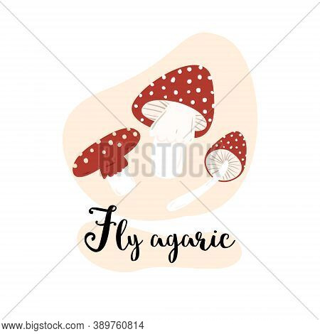 Fly Agaric, A Set Of Fly Agaric Mushrooms On A White Background. Flat Vector Cartoon Illustration.