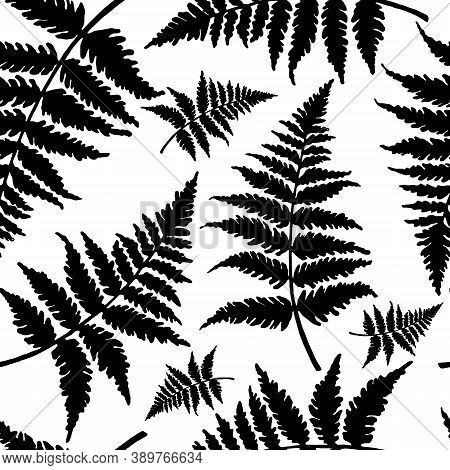 Set Of Drawings Of Leaves In The Form Of Antistress Coloring. Isolate On A White Background. Black A