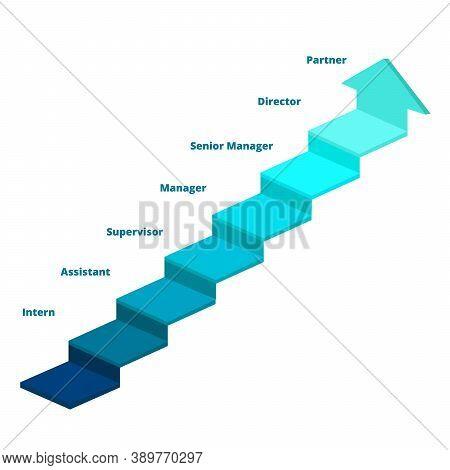 Career Step Diagram Infographic Ladder Intern Assistant Supervisor Manager Senior Manager Director P