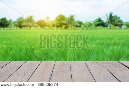 Old Wooden Table, Field Background, Trees And Sky: For Placing Items And Adding Text With Emphasis O