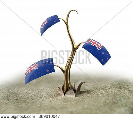 3d Illustration. 3d Sprout With New Zealand Flag On White