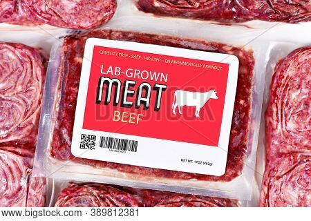 Lab Grown Cultured Meat Concept For Artificial In Vitro Cell Culture Meat Production With Frozen Pac