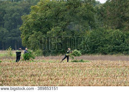 Ravenswoud - October 15 2020: Ravenswoud, Friesland, The Netherlands. Police Officers In Action Seiz