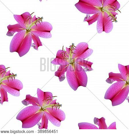 Seamless Pattern With Flowers Of Pink Lilies, Beautiful Realism.