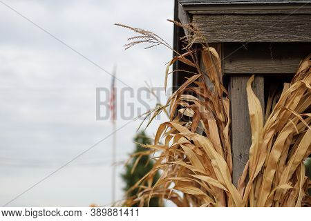 A Close-up Image Of Corn Husk On A Wooden Pole Against A Sky