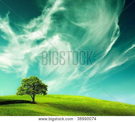 green landscape, ecology