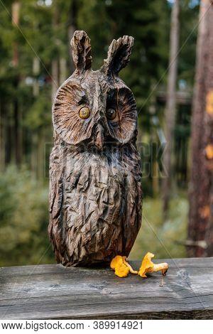 Figurine Of An Owl Carved From Wood And Chanterelles. Treetop Walkway (stezka Korunami Stromu) Lipno