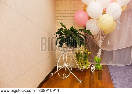 Bunch Of Colourful Party Balloons On A Yellow Background. Present Box With Baloons. Party Celebratin