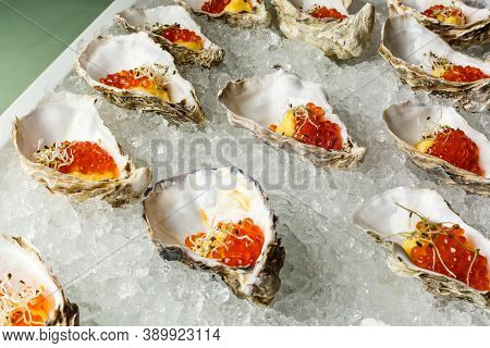 Fresh Oysters Close-up On Blue Plate, Served Table With Oysters, Lemon And Ice. Healthy Sea Food. Oy