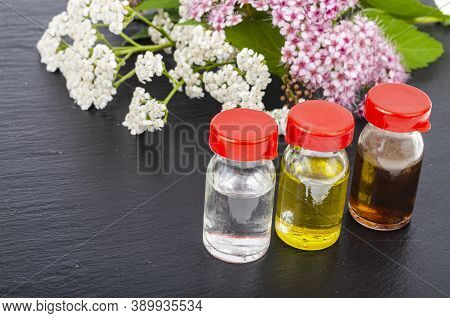 Wild Plants, Bottles With Extracts And Tinctures, Alternative Medicine, Spa