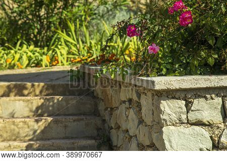 Natural Stone Steps And Retaining Wall, Planter And Garden Border Framing Home Entrance. Beautiful H