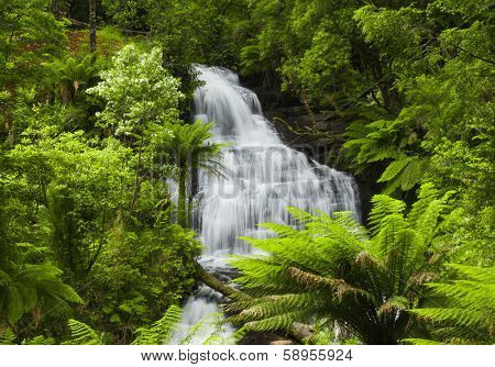Waterfall in Victoria, Australia