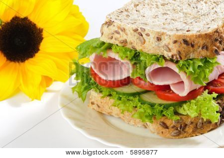Healthy Sandwich With Sunflower