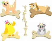 Here is a collection of animals on their bones.  Includes a Cat, Dog, Chick, and Mouse. poster