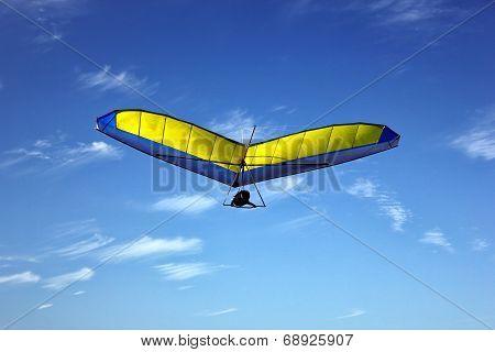 Hang Glider over Long Reef, Sydney