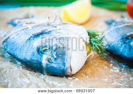 Raw Dorado Fish With Lemon, Dill And Sea Salt