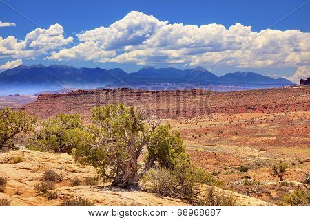 Painted Desert Boulders Yellow Sandstone La Salle Mountains Arches National Park Moab Utah