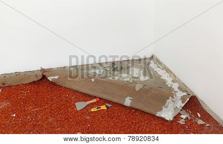 Home Renovation, Carpet Remove