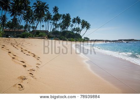 Paradise beach with coconut trees and footprints in golden sand Tangalle Southern Province Sri Lanka Asia. poster