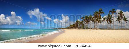 Tropical Beach In Dominican Republic, Panoramic