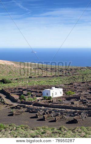 Lanzarote - View to the rocky island Roque del Este