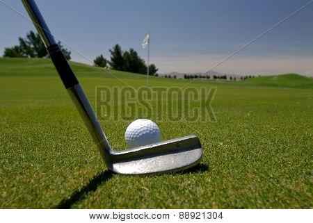 Lining Up Along Putt On A Golf Green