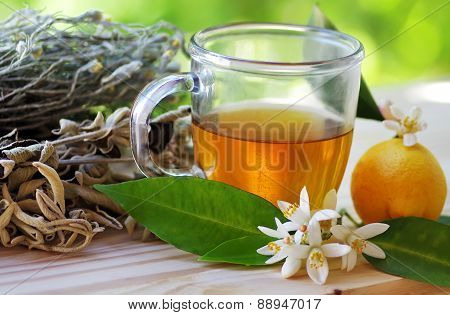 Cup Of Herbal Tea And Lemon On Table