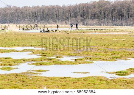 Ornithologists On Foot Bridge