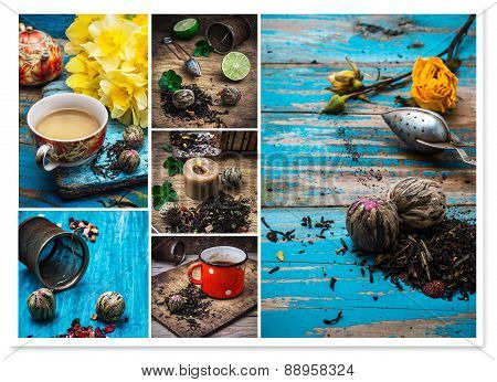 Collage Tea Brew