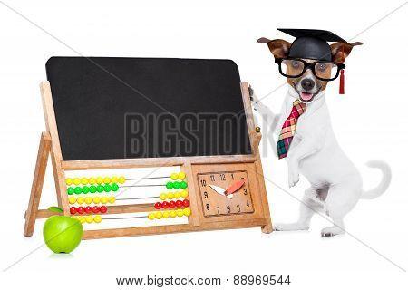 School Teacher Dog